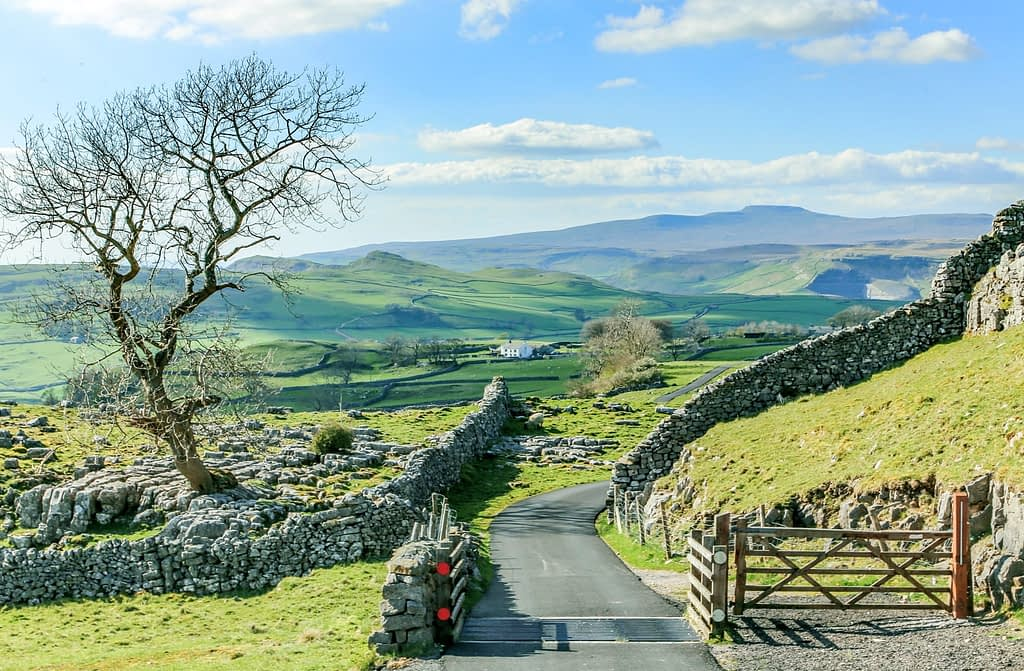 Photo of a view of the Yorkshire Dales, looking at a quiet road with farm gate and cattle grid, with one of the great fells in the background