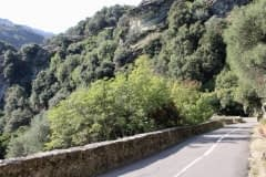 cycling_in_corsica_045