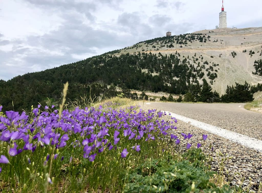 Looking up the road to the summit of Mont Ventoux
