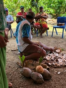 Tahiti tandem tour - Making copra, with musical accompaniment